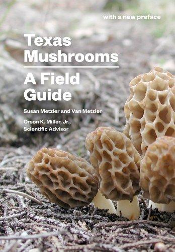 9780292751262: Texas Mushrooms: A Field Guide (Corrie Herring Hooks Series)