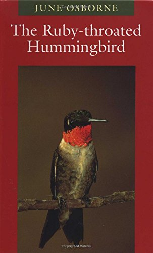 9780292760479: The Ruby-throated Hummingbird (Corrie Herring Hooks)