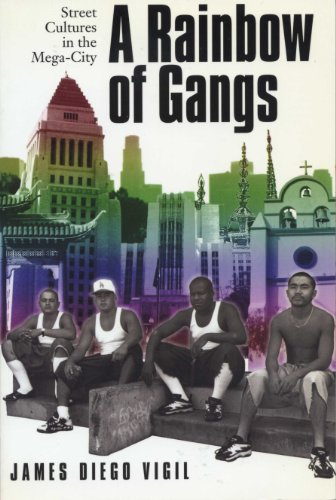 9780292787490: A Rainbow of Gangs: Street Cultures in the Mega-City