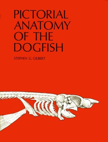 9780295951485: Pictorial Anatomy of the Dogfish