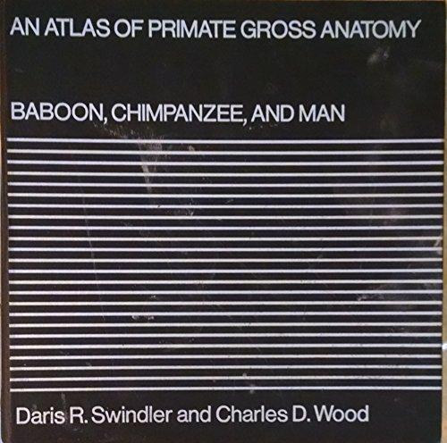 9780295952611: An Atlas of Primate Gross Anatomy