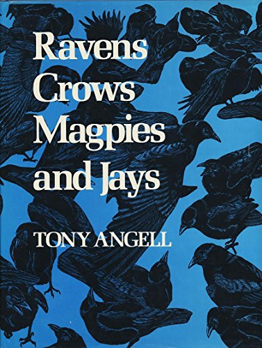 Ravens, Crows, Magpies and Jays: Angell, Tony