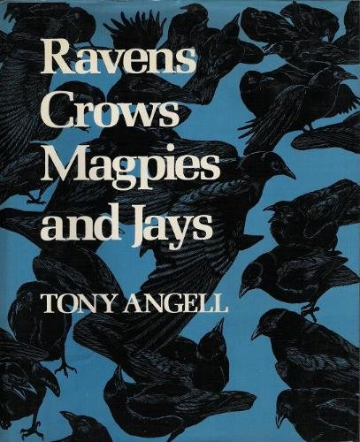 9780295955896: Ravens, Crows, Magpies and Jays