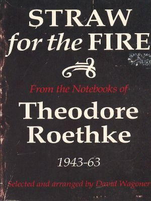 Image for Straw for the fire: From the notebooks of Theodore Roethke, 1943-63