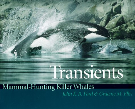 9780295978178: Transients: Mammal-Hunting Killer Whales of British Columbia, Washington, and Southeastern Alaska