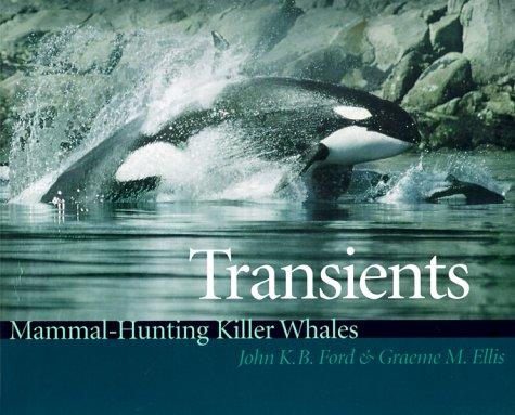 9780295978178: Transients: Mammal-Hunting Killer Whales of British Columbia, Washington, and Southeastern Alaska