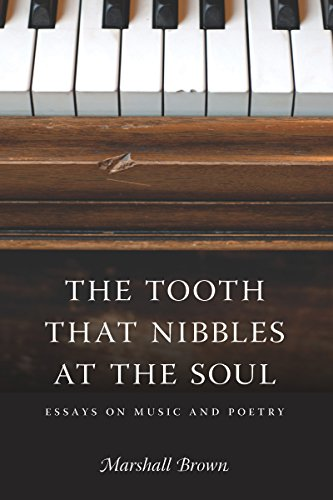 9780295990064: The Tooth That Nibbles at the Soul: Essays on Music and Poetry (Literary Conjugations)