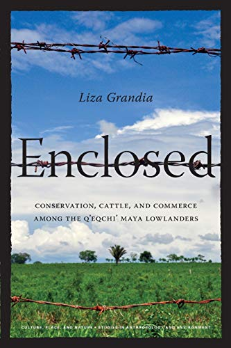 9780295991665: Enclosed: Conservation, Cattle, and Commerce Among the Q'eqchi' Maya Lowlanders (Culture, Place, and Nature)