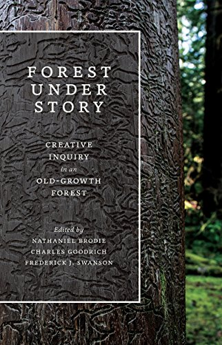 9780295995458: Forest Under Story: Creative Inquiry in an Old-Growth Forest (Ruth Kirk Book Fund)