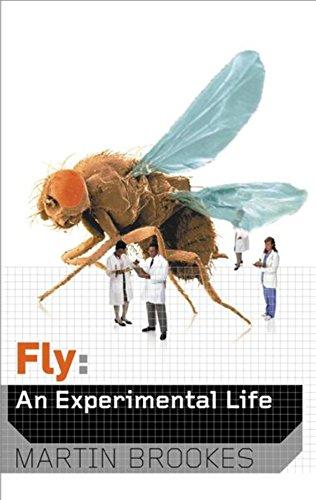 9780297645894: Fly: An Experimental Life