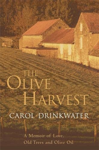 9780297847809: The Olive Harvest