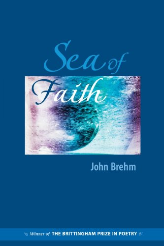 9780299202040: Sea of Faith (Brittingham Prize for Poetry)