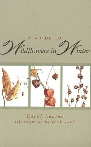 9780300062076: A Guide to Wildflowers in Winter: Herbaceous Plants of Northeastern North America