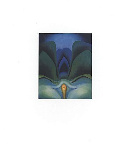 9780300081763: Georgia O'Keeffe : Catalogue Raisonne