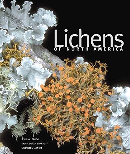 9780300082494: Lichens of North America