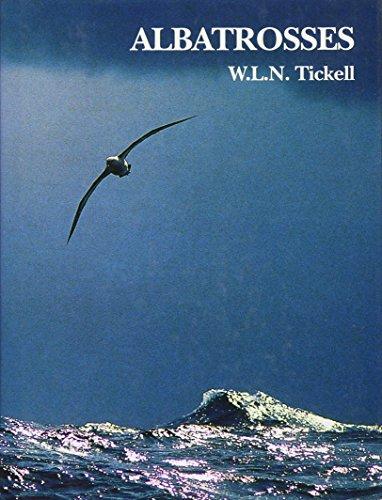 Albatrosses (Hardback): W L N Tickell