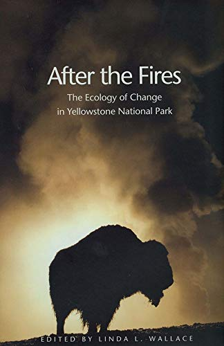 9780300100488: After the Fires