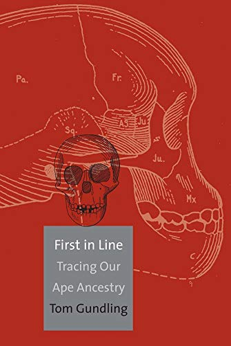 9780300104141: First in Line: Tracing Our Ape Ancestry