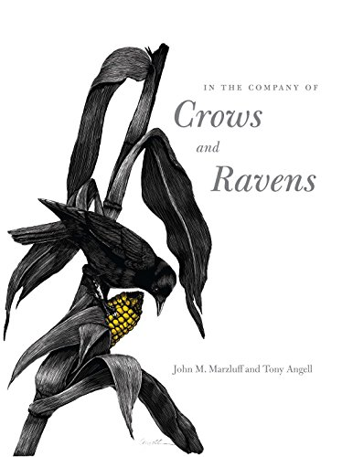 9780300122558: In the Company of Crows and Ravens