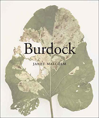 9780300128611: Burdock