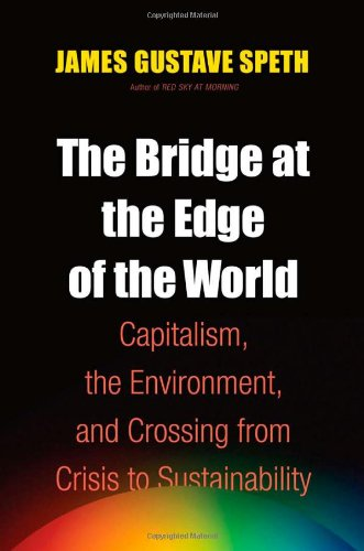 9780300136111: The Bridge at the Edge of the World: Capitalism, the Environment, and Crossing from Crisis to Sustainability