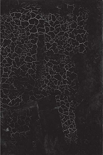 Black Square: Aleksandra Shatskikh, Marian Schwartz