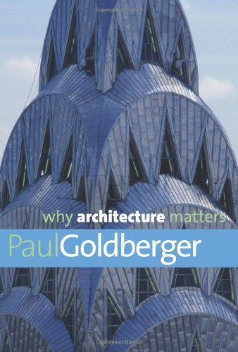 9780300144307: Why Architecture Matters (Why X Matters Series)