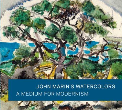 9780300166378: John Marin's Watercolors: A Medium for Modernism (Art Institute of Chicago)