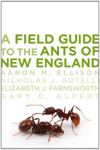 9780300169300: A Field Guide to the Ants of New England