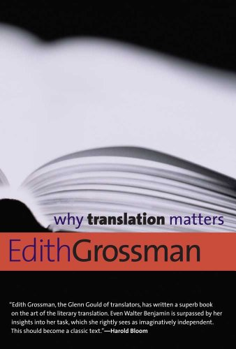 9780300171303: Why Translation Matters (Why X Matters)