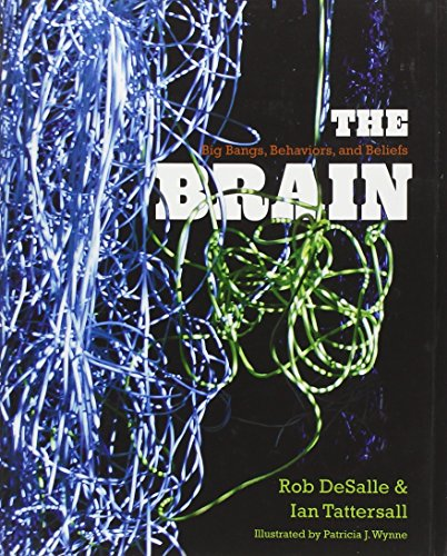 9780300175226: The Brain: Big Bangs, Behaviors, and Beliefs
