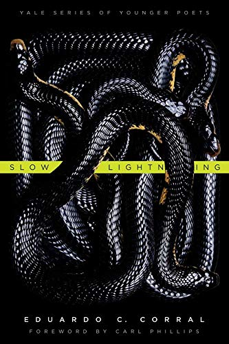 9780300178937: Slow Lightning (Yale Series of Younger Poets)