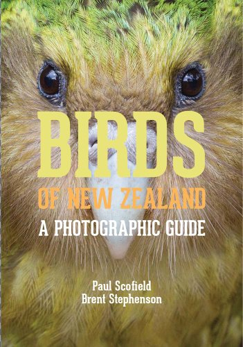 Birds of New Zealand: A Photographic Guide: Scofield, Paul; Stephenson, Brent