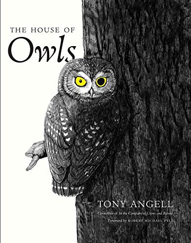 9780300203448: The House of Owls