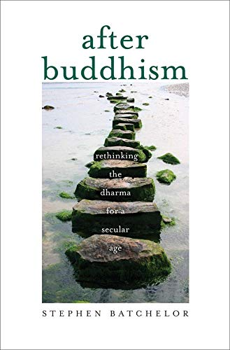 9780300205183: After Buddhism: Rethinking the Dharma for a Secular Age