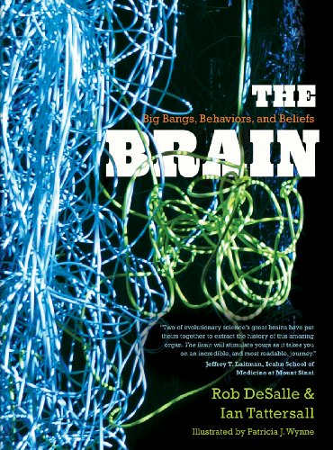 The Brain: Big Bangs, Behaviors, and Beliefs: DeSalle, Rob; Tattersall, Ian