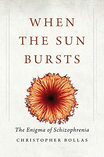 9780300214734: When the Sun Bursts: The Enigma of Schizophrenia