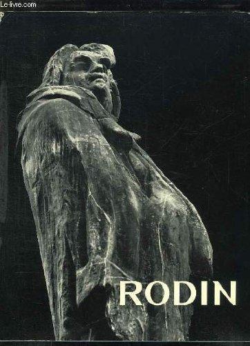 9780302002896: Rodin
