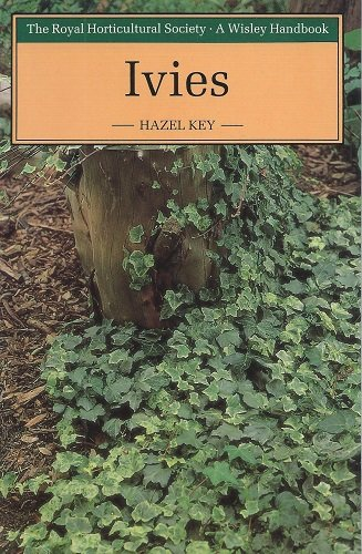 Ivies: Key, Hazel
