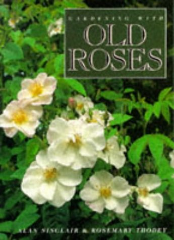 9780304345533: Gardening with Old Roses