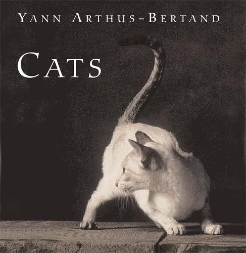9780304356294: Cats