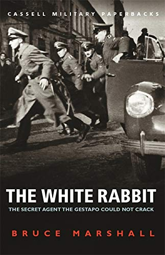 9780304356973: The White Rabbit