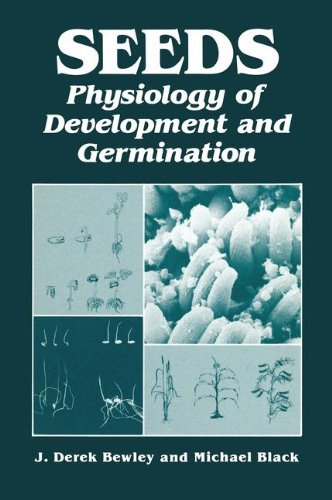 9780306416873: Seeds:Physiology of Development and Germination