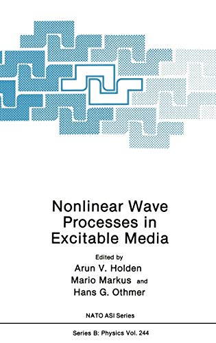 9780306438004: Nonlinear Wave Processes in Excitable Media (Nato Science Series B:)