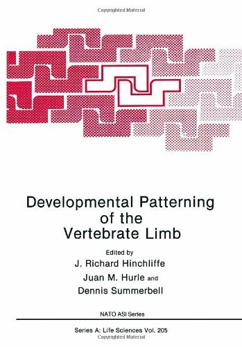 9780306439278: Developmental Patterning of the Vertebrate Limb (Nato Science Series: A:)
