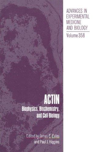 9780306448102: Actin: Biophysics, Biochemistry and Cell Biology (Advances in Experimental Medicine & Biology (Springer))