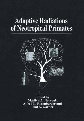 9780306453991: Adaptive Radiations of Neotropical Primates
