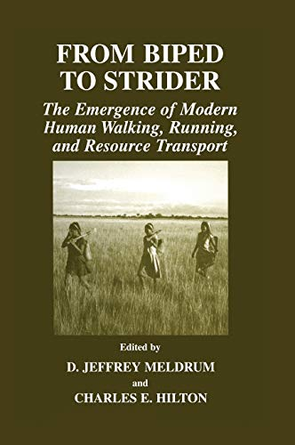 9780306479991: From Biped to Strider: The Emergence of Modern Human Walking, Running, and Resource Transport