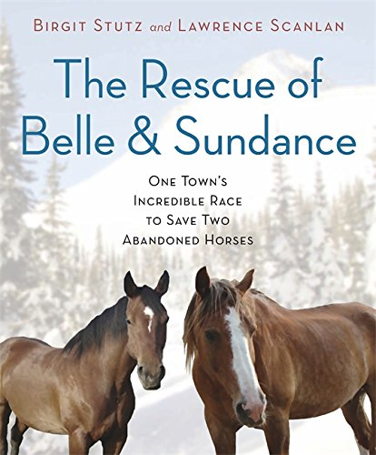 The Rescue of Belle and Sundance: One Town's Incredible Race to Save Two Abandoned Horses (A Merloyd Lawrence Book) (0306820978) by Birgit Stutz; Lawrence Scanlan