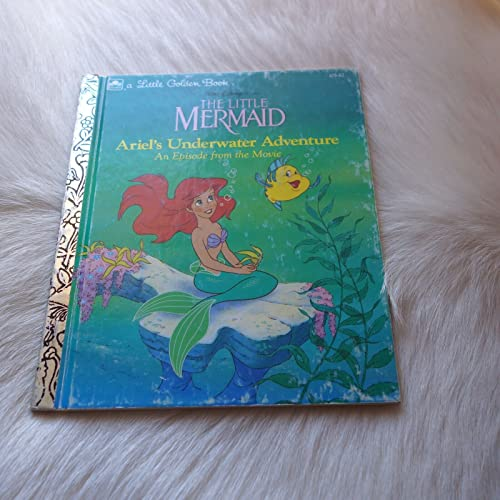 Little Mermaid (Picture Story Books): Andersen, Hans Christian